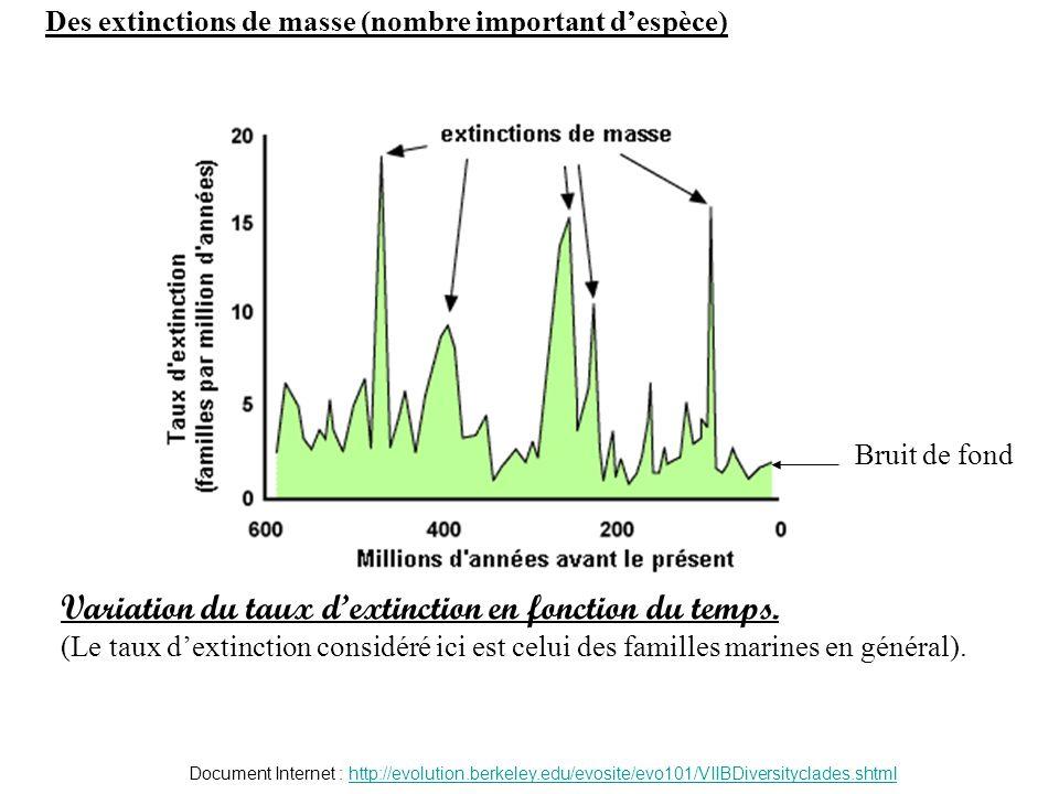Variation du taux d'extinction en fonction du temps.