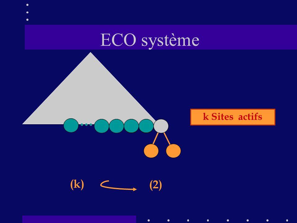 ECO système (2) (k) … … k Sites actifs