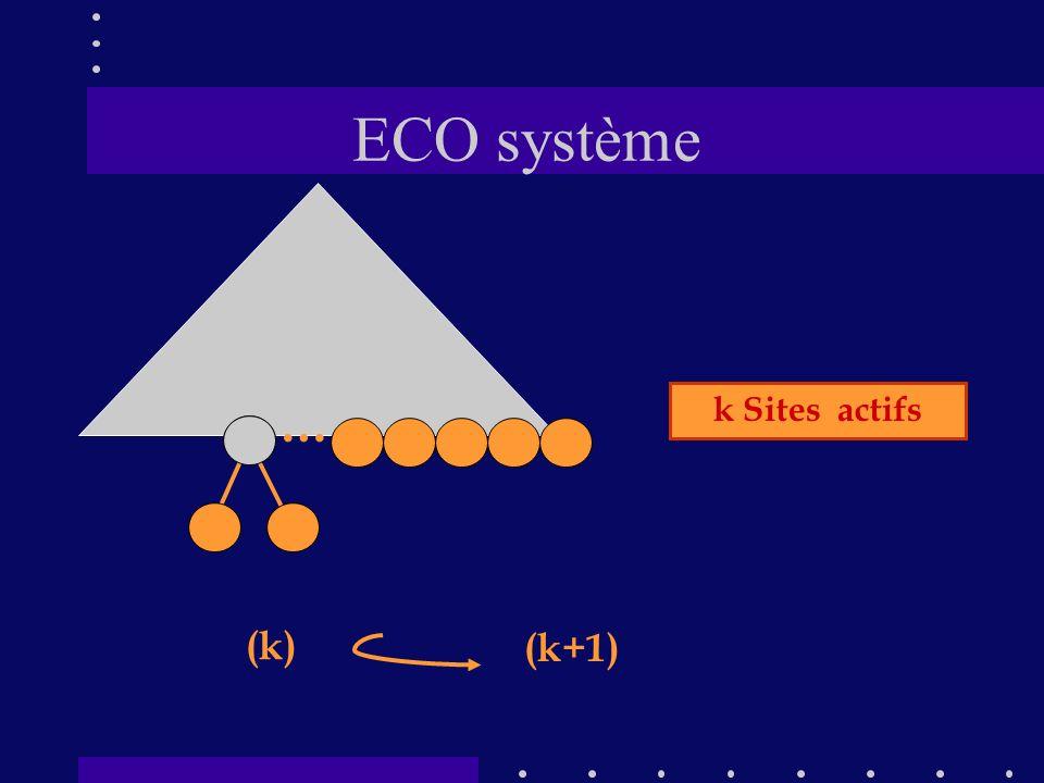 ECO système … k Sites actifs (k) (k+1)