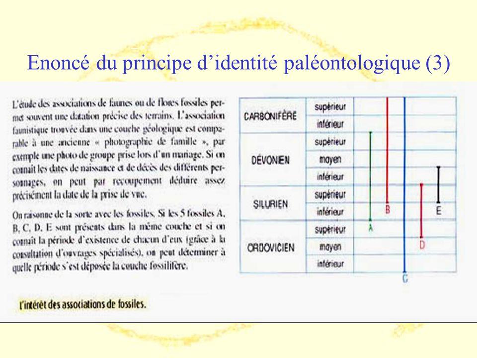 Enoncé du principe d'identité paléontologique (3)