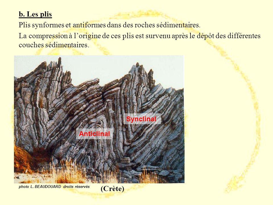 Plis synformes et antiformes dans des roches sédimentaires.