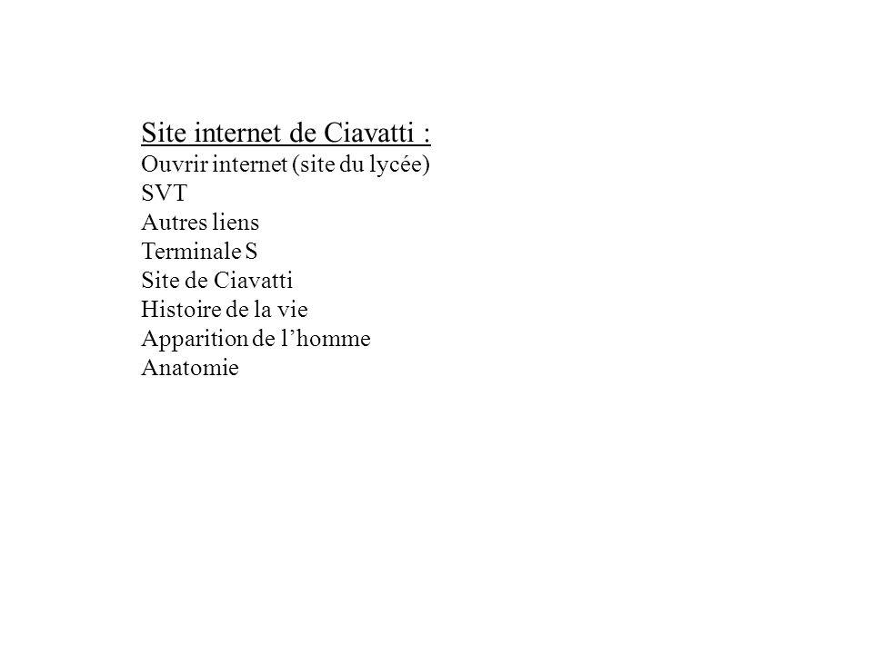 Site internet de Ciavatti :