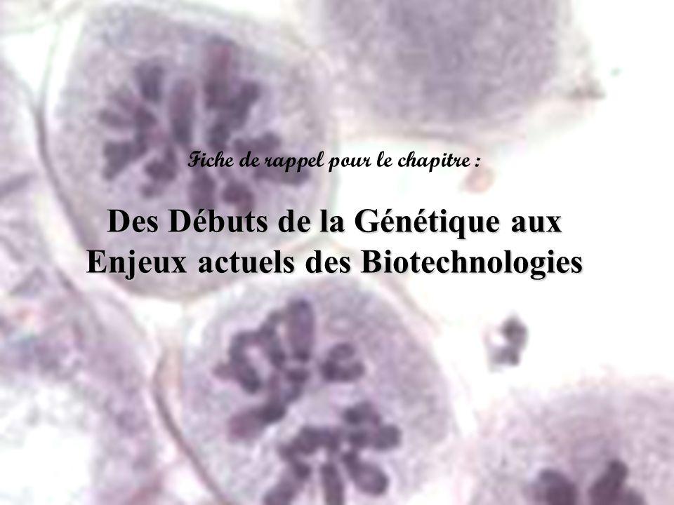 Des Débuts de la Génétique aux Enjeux actuels des Biotechnologies