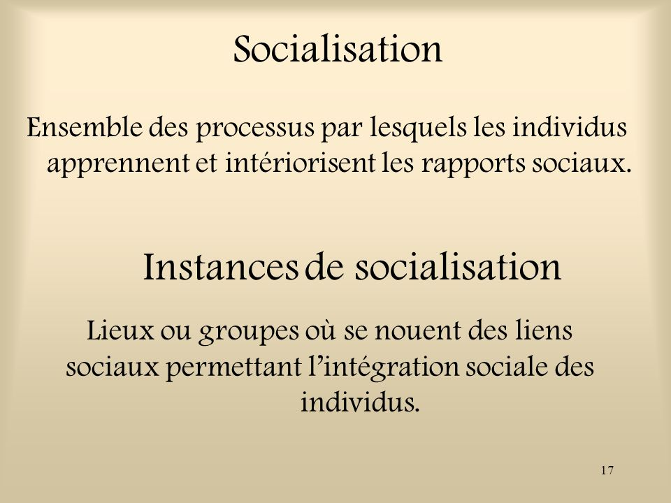 Instances de socialisation