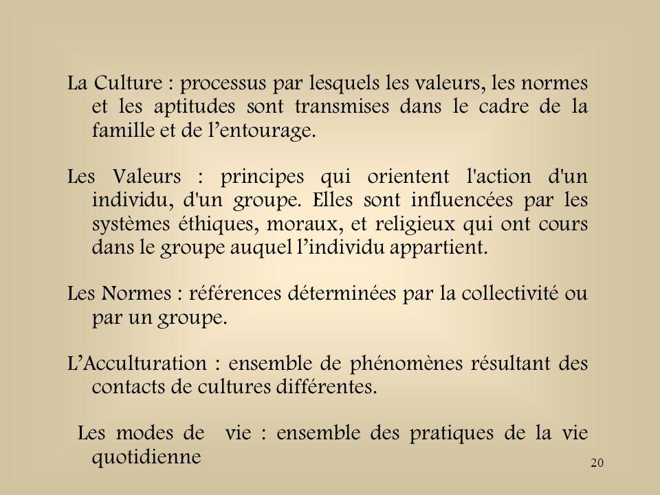 La Culture : processus par lesquels les valeurs, les normes et les aptitudes sont transmises dans le cadre de la famille et de l'entourage.