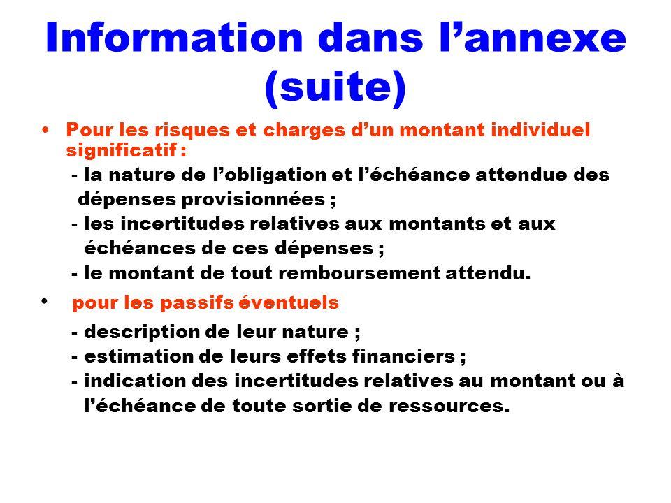 Information dans l'annexe (suite)