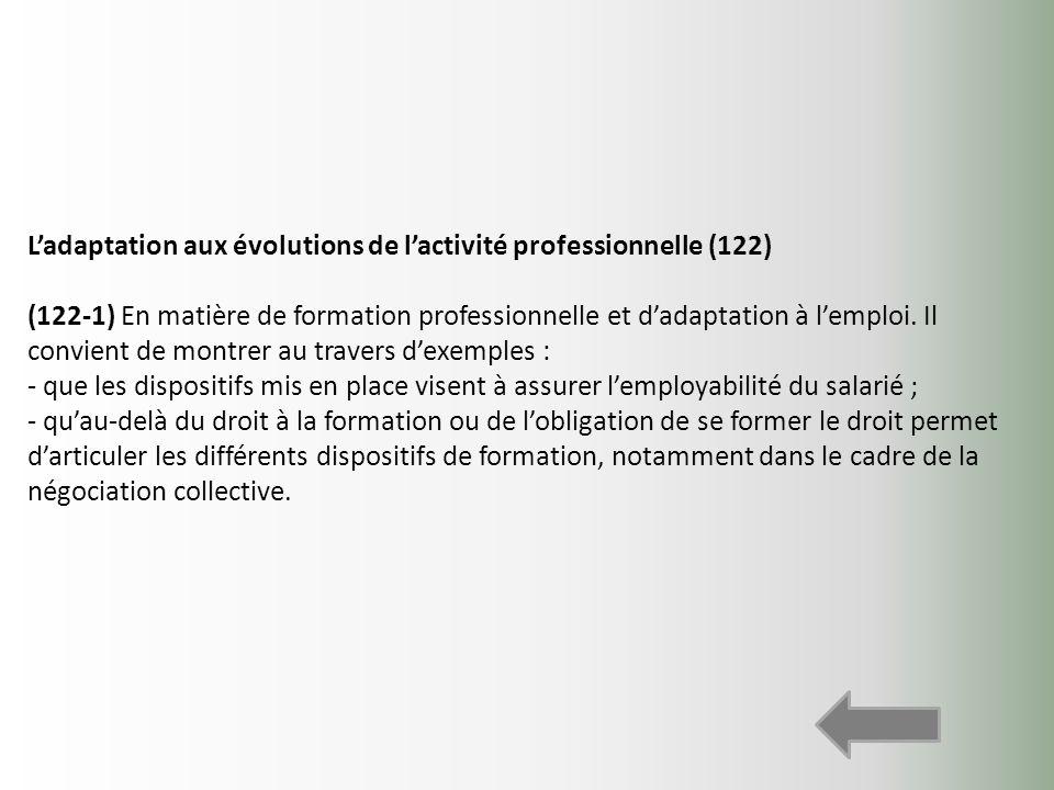 L'adaptation aux évolutions de l'activité professionnelle (122)