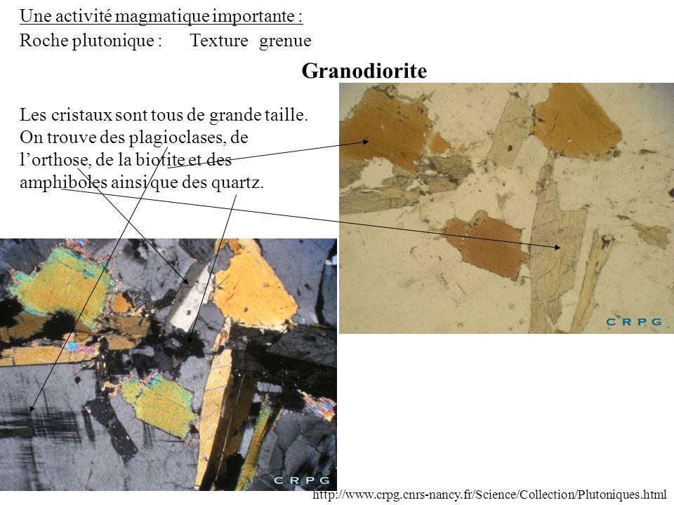 Granodiorite Une activité magmatique importante : Roche plutonique :