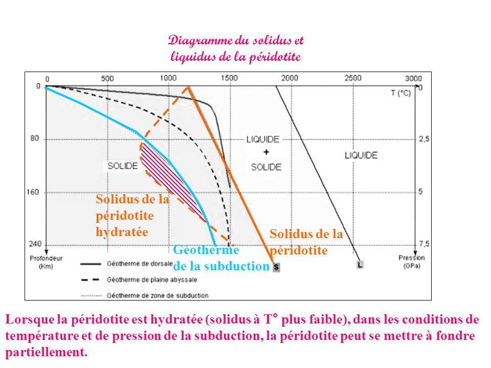 Diagramme du solidus et liquidus de la péridotite