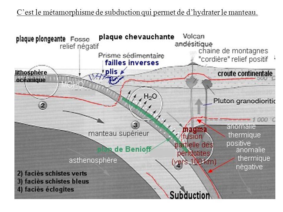 C'est le métamorphisme de subduction qui permet de d'hydrater le manteau.