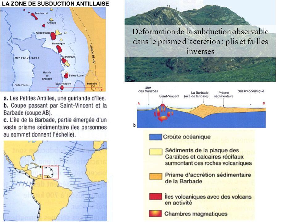 Déformation de la subduction observable dans le prisme d'accrétion : plis et failles inverses