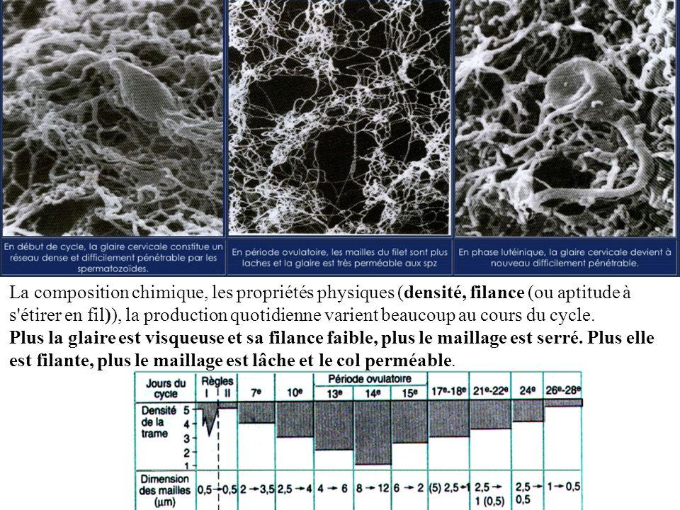 La composition chimique, les propriétés physiques (densité, filance (ou aptitude à s étirer en fil)), la production quotidienne varient beaucoup au cours du cycle.