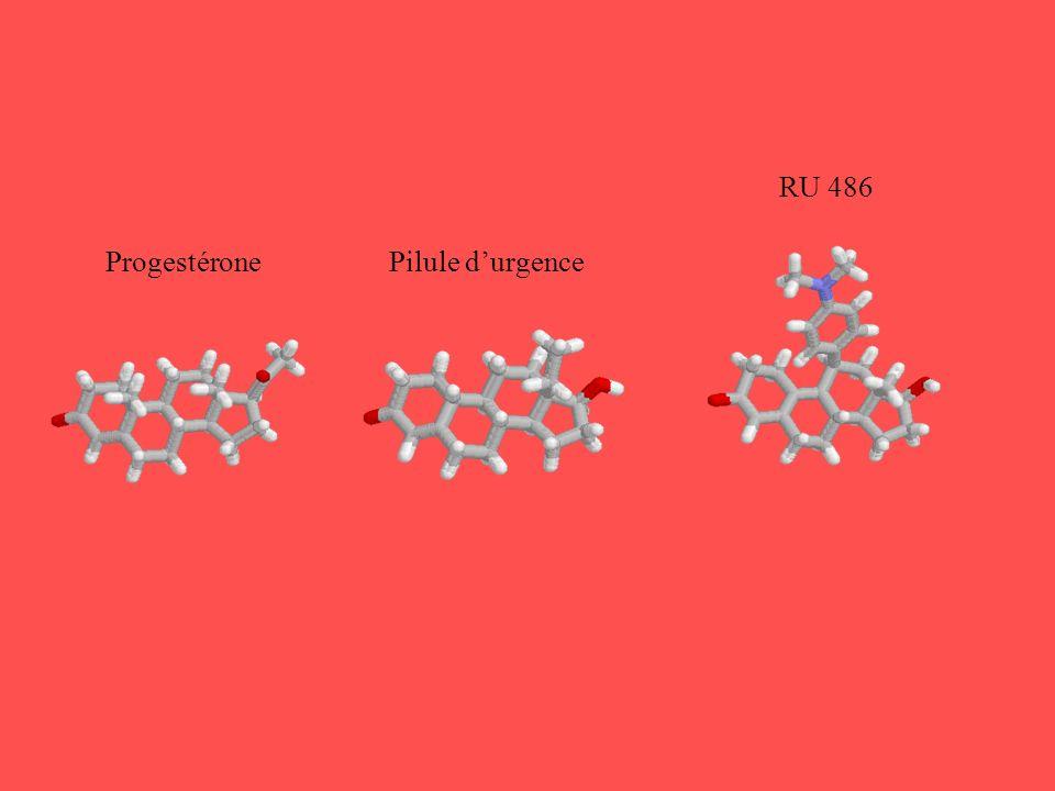 RU 486 Progestérone Pilule d'urgence
