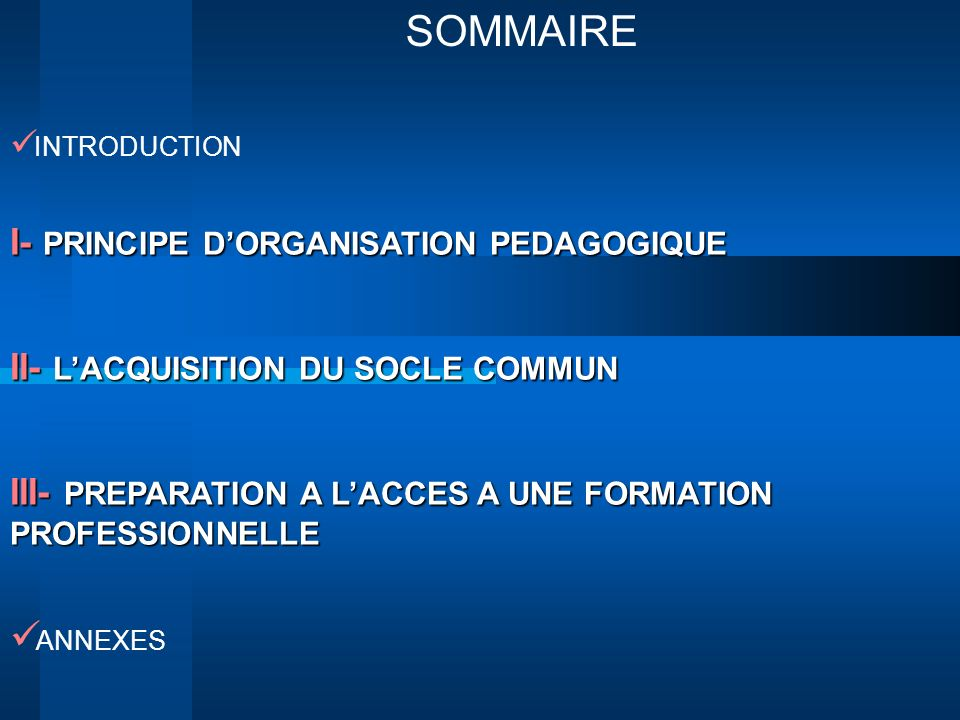 SOMMAIRE I- PRINCIPE D'ORGANISATION PEDAGOGIQUE