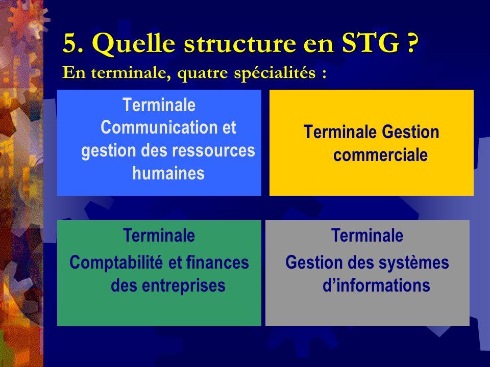 5. Quelle structure en STG En terminale, quatre spécialités :