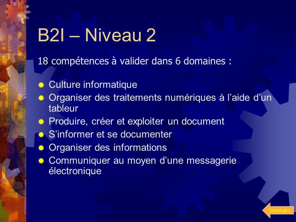 B2I – Niveau 2 18 compétences à valider dans 6 domaines :