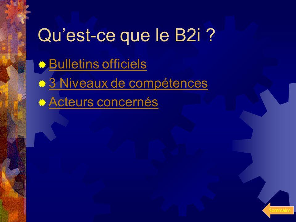 Qu'est-ce que le B2i Bulletins officiels 3 Niveaux de compétences