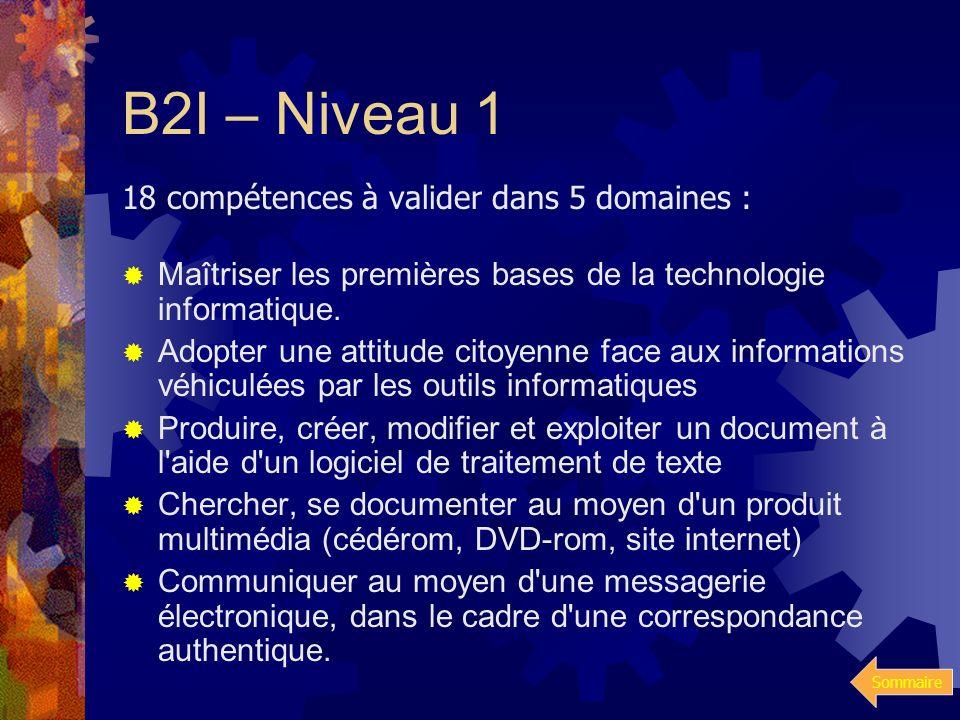 B2I – Niveau 1 18 compétences à valider dans 5 domaines :