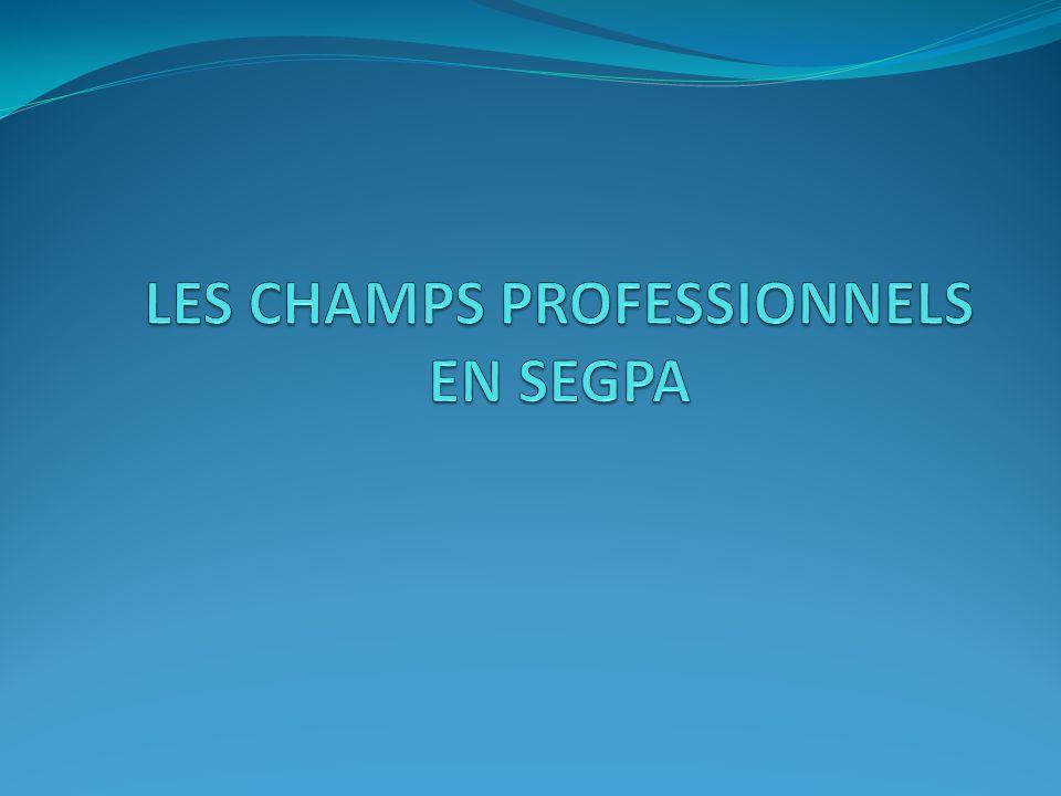 LES CHAMPS PROFESSIONNELS EN SEGPA