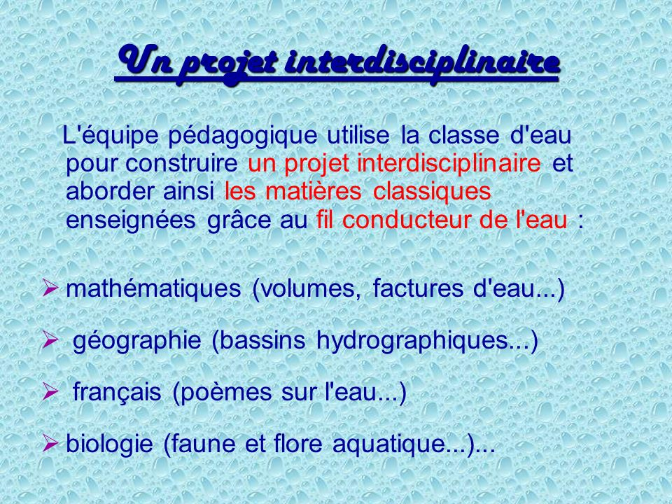 Un projet interdisciplinaire