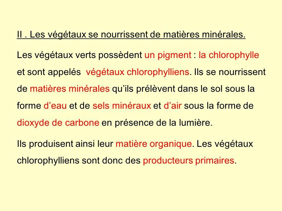II . Les végétaux se nourrissent de matières minérales.