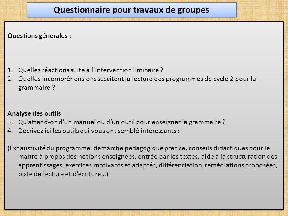 Questionnaire pour travaux de groupes