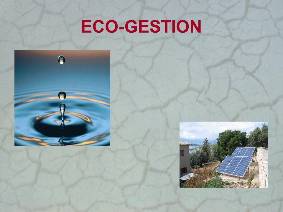 ECO-GESTION
