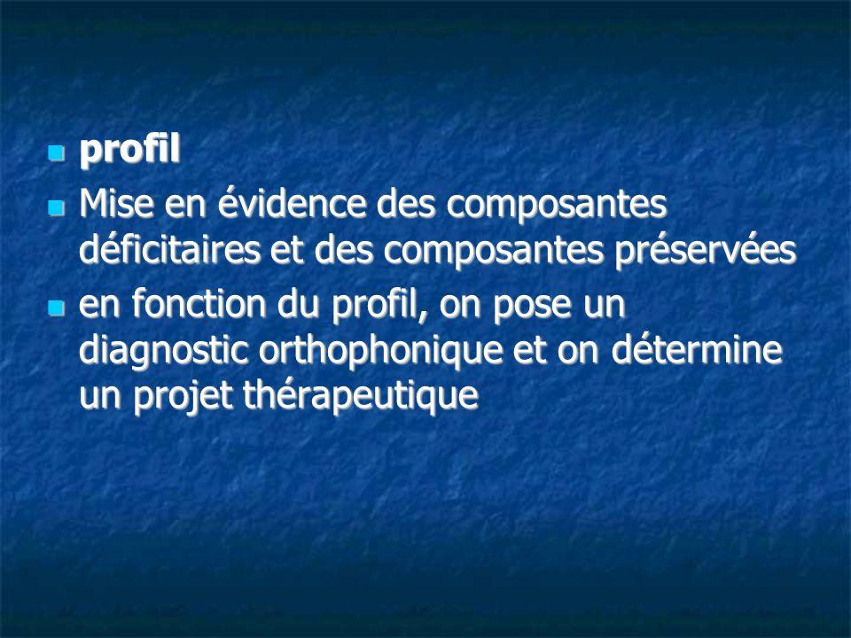 profilMise en évidence des composantes déficitaires et des composantes préservées.