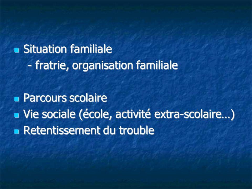 Situation familiale- fratrie, organisation familiale. Parcours scolaire. Vie sociale (école, activité extra-scolaire…)