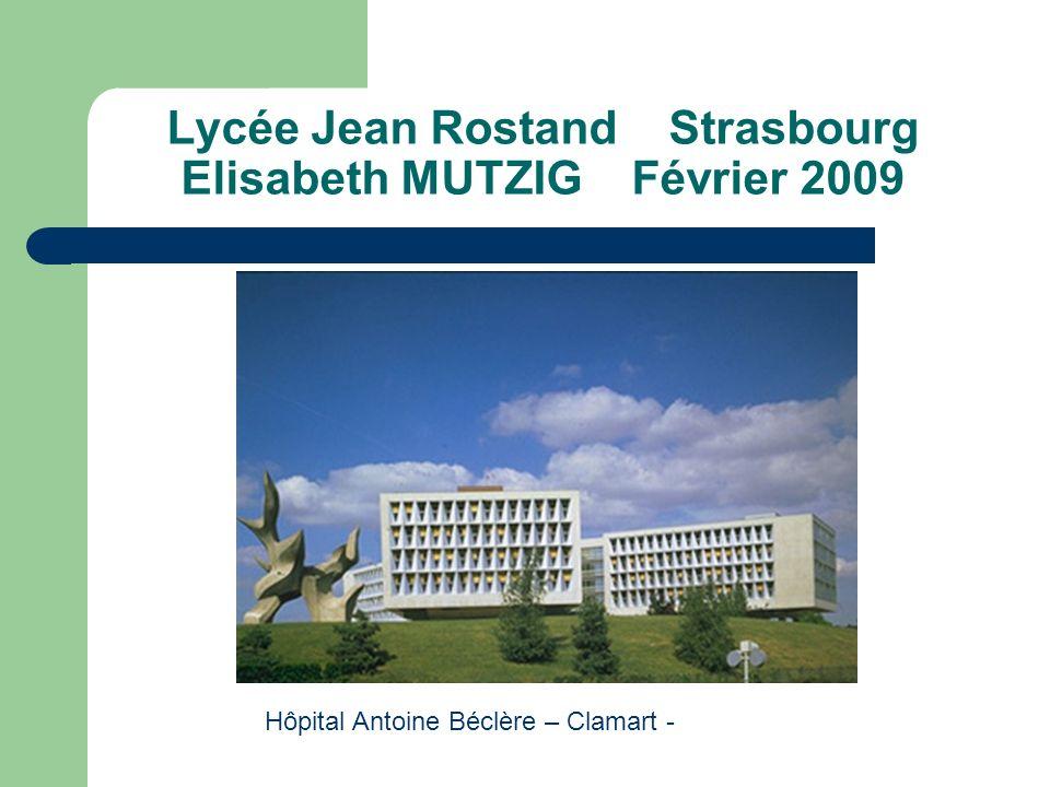 Lycée Jean Rostand Strasbourg Elisabeth MUTZIG Février 2009