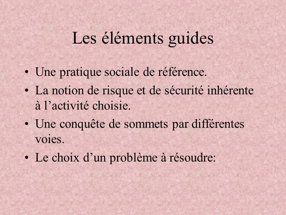 Les éléments guides Une pratique sociale de référence.