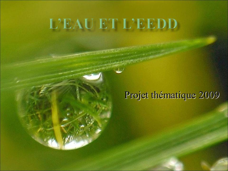 L'eau et l'EEDD Projet thématique 2009