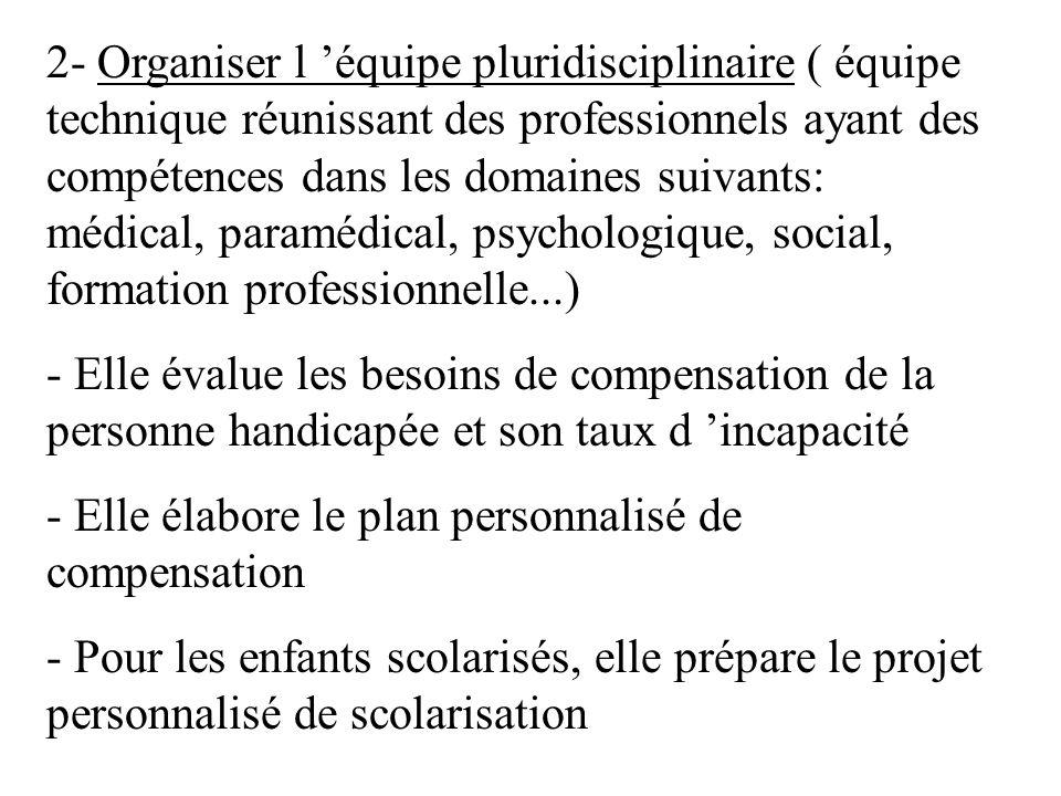 2- Organiser l 'équipe pluridisciplinaire ( équipe technique réunissant des professionnels ayant des compétences dans les domaines suivants: médical, paramédical, psychologique, social, formation professionnelle...)