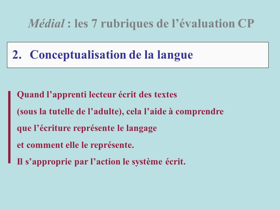 2. Conceptualisation de la langue
