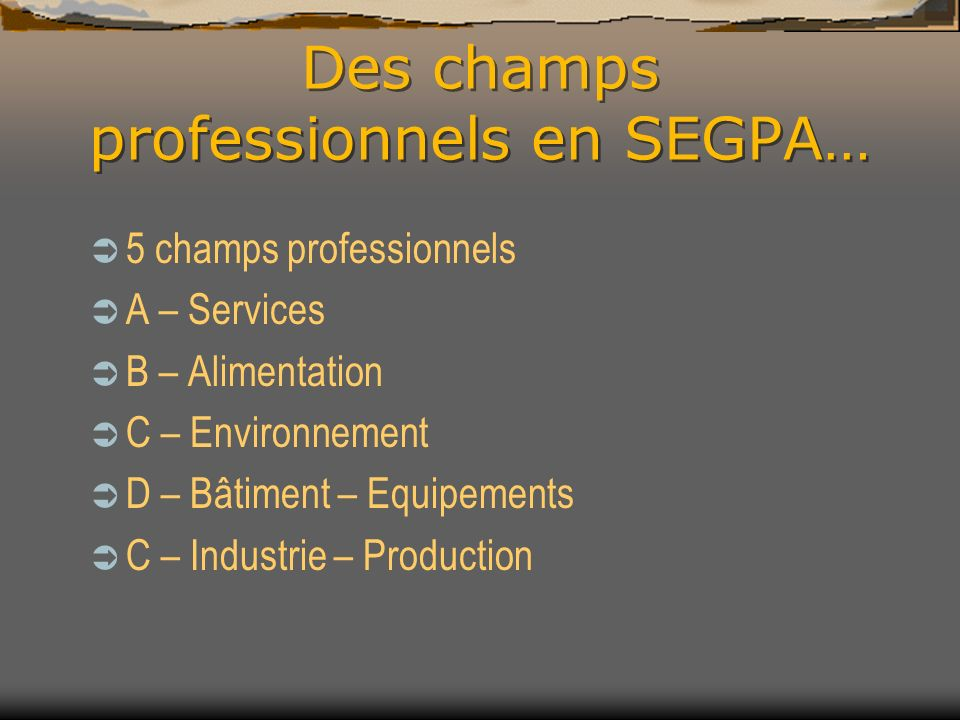 Des champs professionnels en SEGPA…