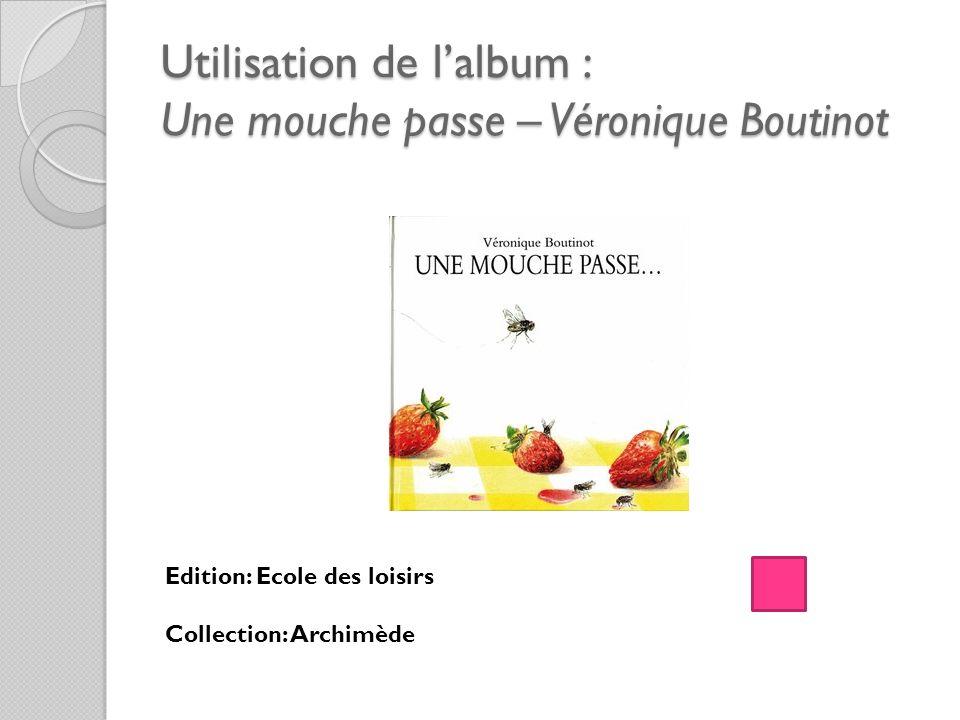 Utilisation de l'album : Une mouche passe – Véronique Boutinot