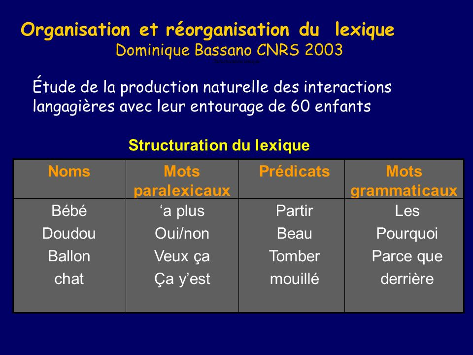 Structuration lexique