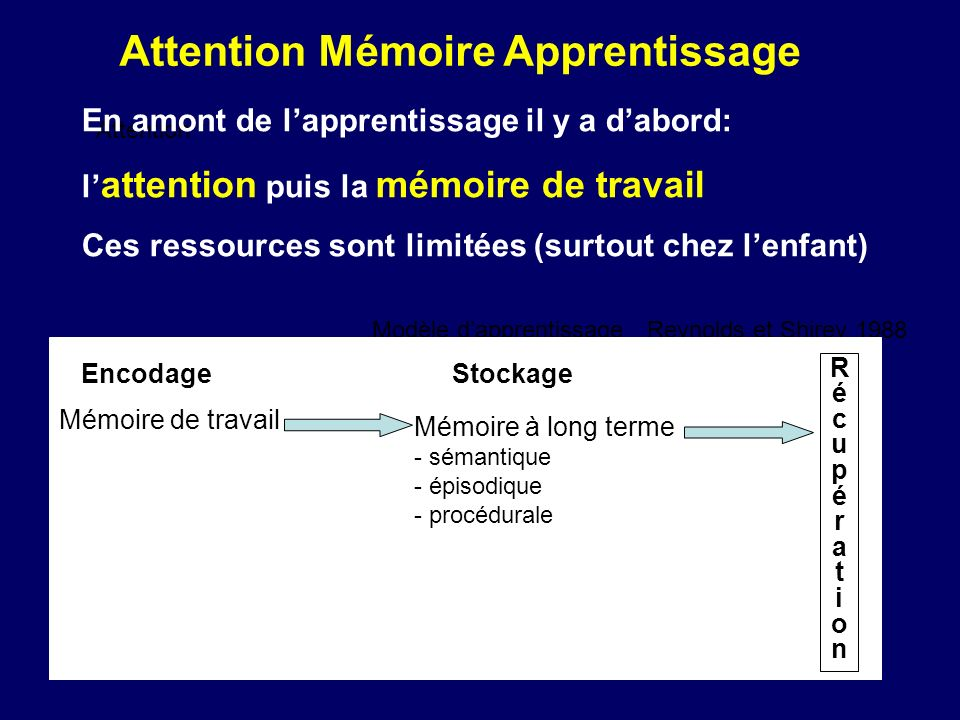 Attention Mémoire Apprentissage