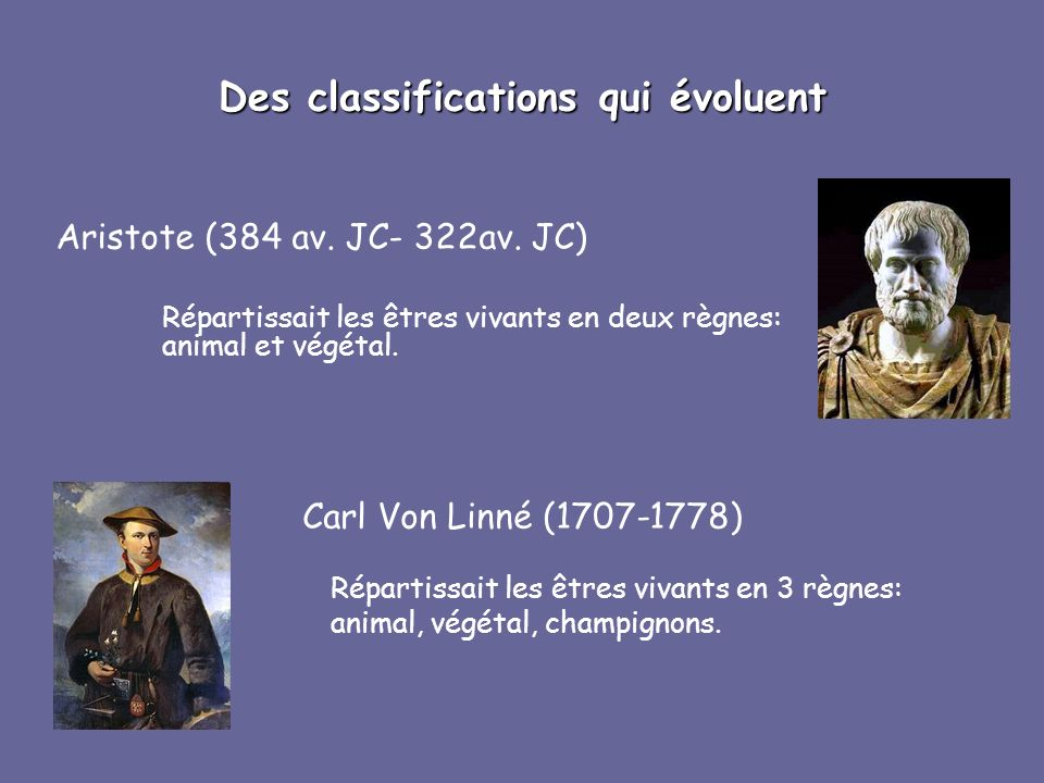 Des classifications qui évoluent