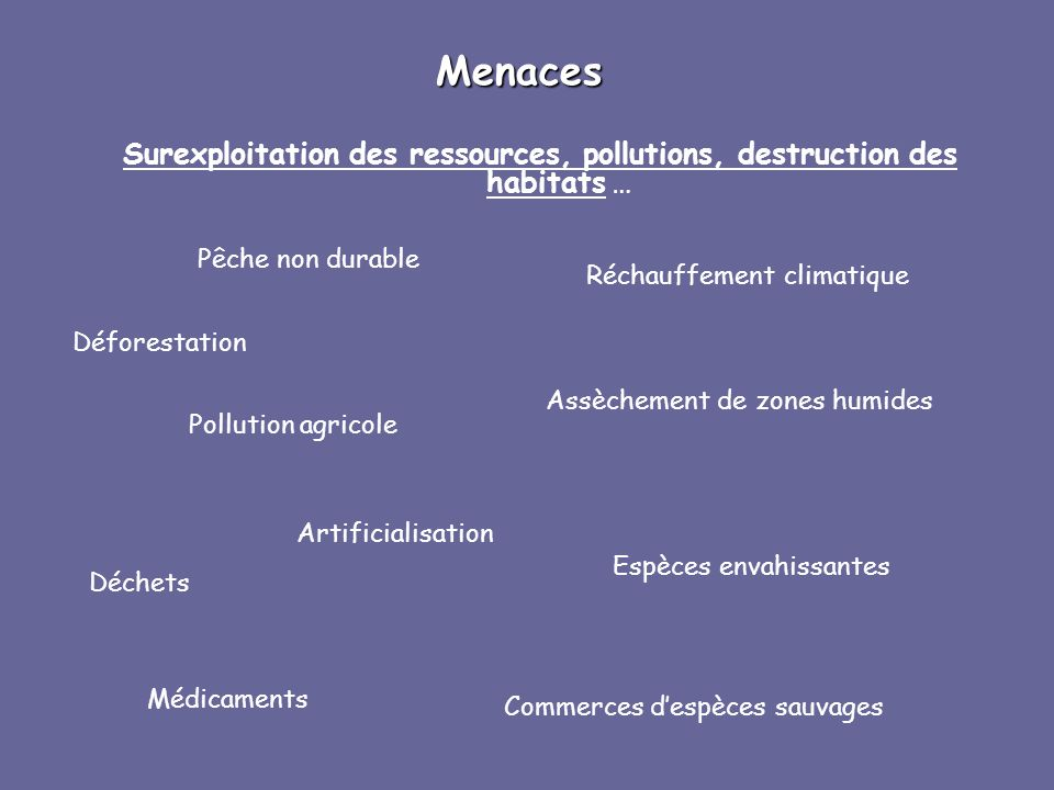 Surexploitation des ressources, pollutions, destruction des habitats …
