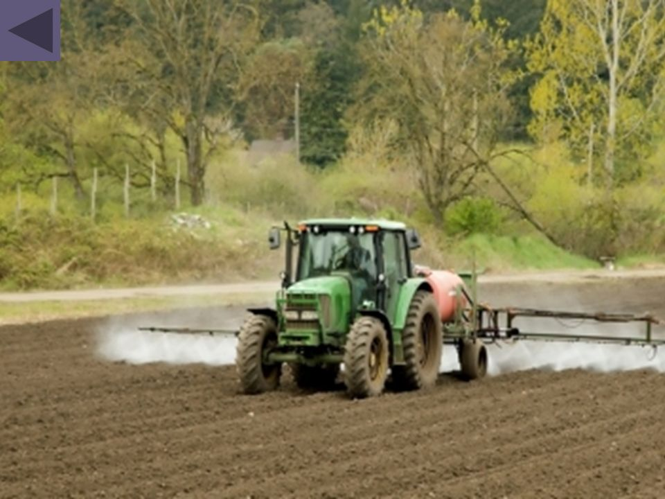 Les sols et eaux sont principalement touchés par les engrais chimiques et les fongicides-pesticides utilisés pour l agriculture