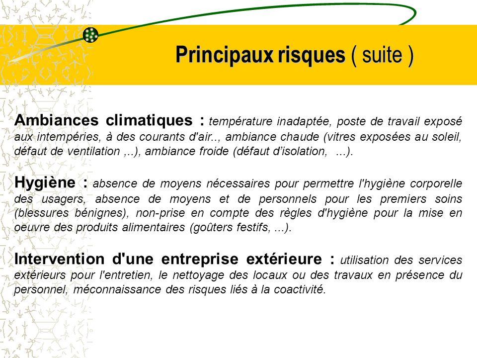 Principaux risques ( suite )