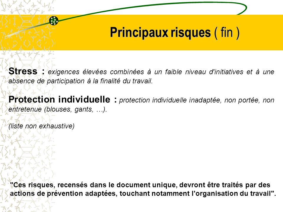 Principaux risques ( fin )