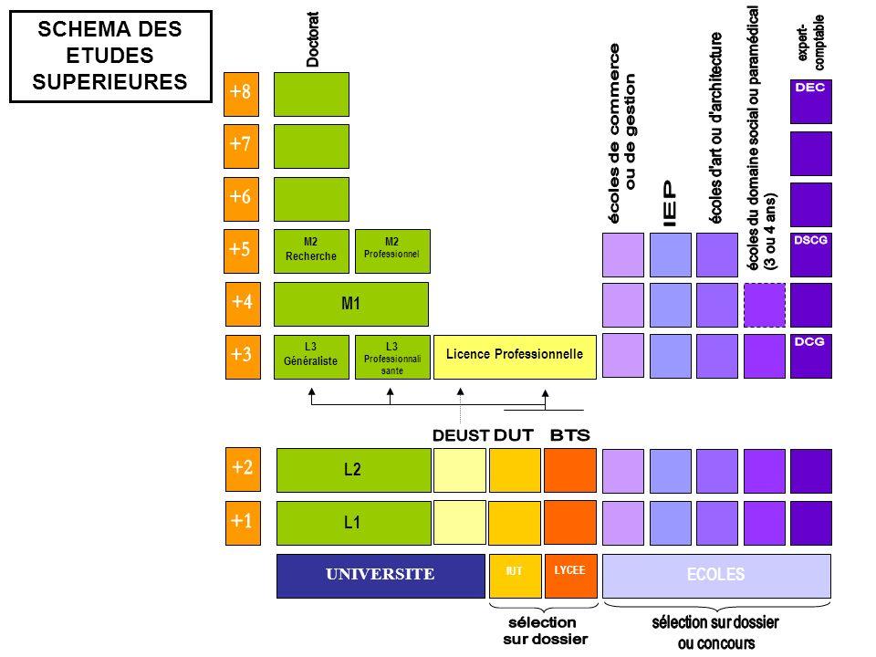 SCHEMA DES ETUDES SUPERIEURES Licence Professionnelle