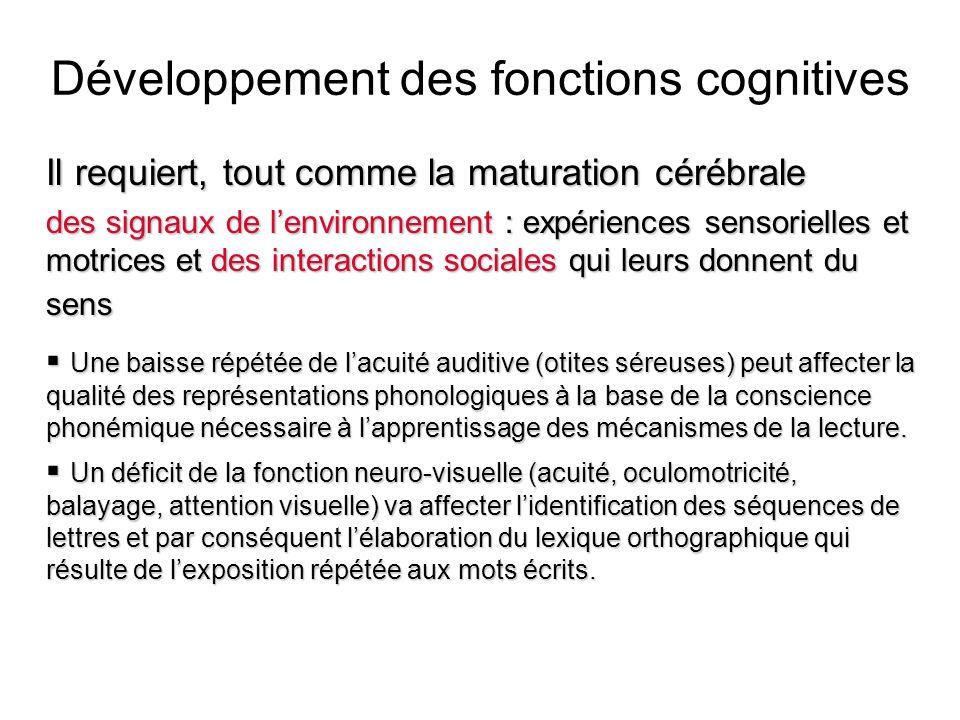 Développement des fonctions cognitives
