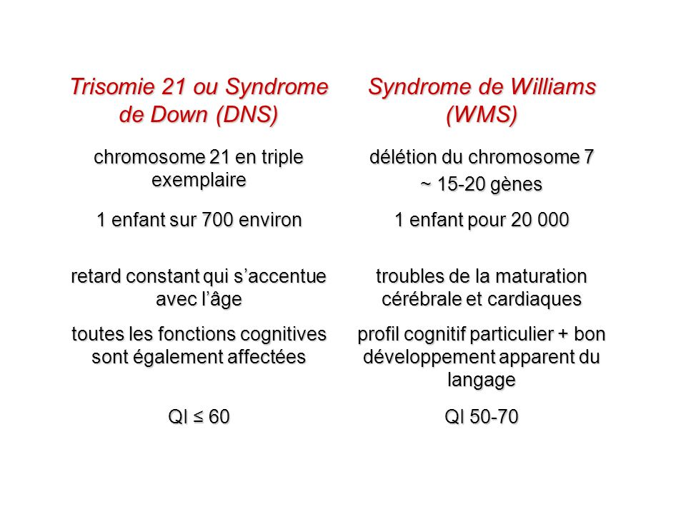 Trisomie 21 ou Syndrome de Down (DNS) Syndrome de Williams (WMS)