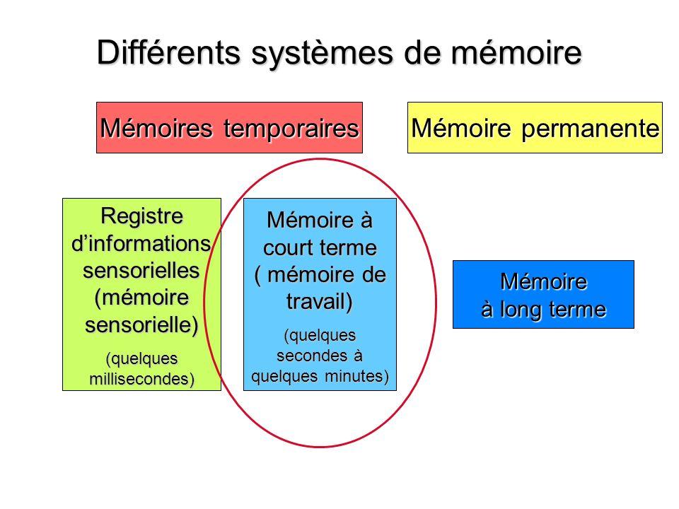 Différents systèmes de mémoire