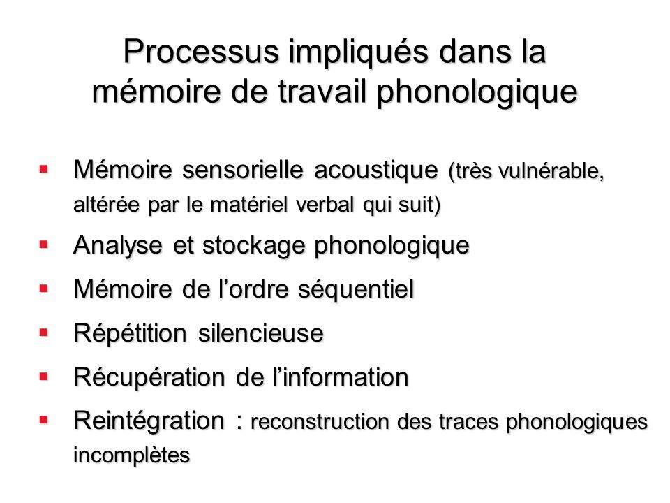 Processus impliqués dans la mémoire de travail phonologique