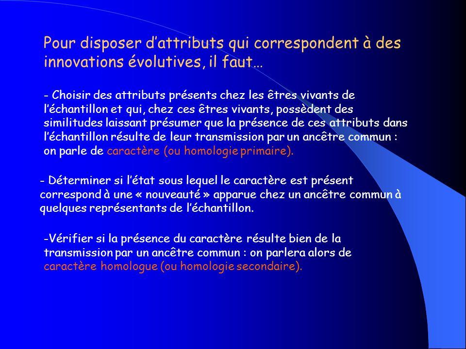 Pour disposer d'attributs qui correspondent à des innovations évolutives, il faut…