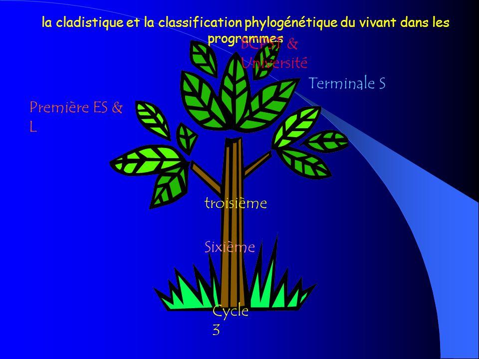 BCPST & Université Terminale S Première ES & L troisième Sixième